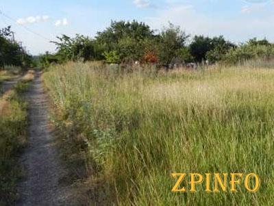В Запорожской области семьям героев Небесной сотни выделили 48,4 га земель