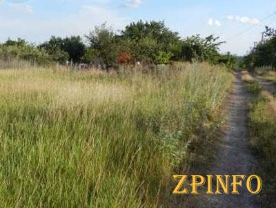 В Запорожской области семьям Небесной сотни выделили земли