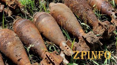 В Запорожской области спасатели обнаружили 7 артиллерийских снарядов и мину