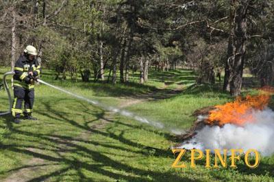 В Запорожской области тушили больше 500 пожаров