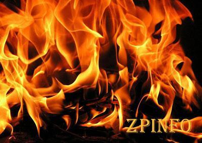 В Запорожской области тушили пожар в частном дворе