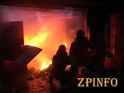 В Запорожской области тушили пожар в гараже