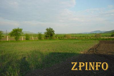 В Запорожской области участникам АТО продолжают выделять земельные участки