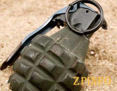 В Запорожской области в маршрутке у бойца нашли гранаты