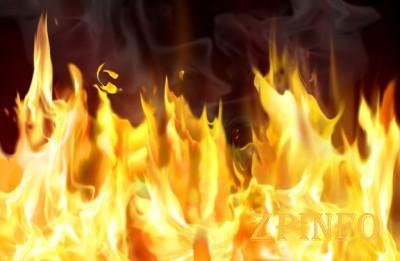 В Запорожской области во время пожара погиб человек