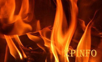 В Запорожской области загорелся дом