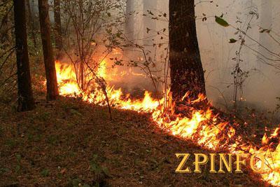 Вчера в Запорожской области было 18 пожаров