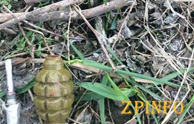 Возле запорожской школы нашли арсенал гранат
