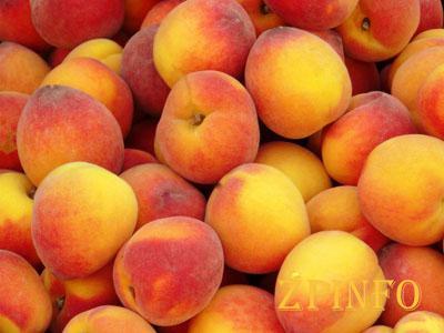Запорожанка нашла персики со своего огорода на рынке