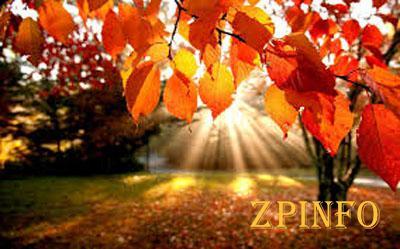 В Запорожье идет настоящая осень