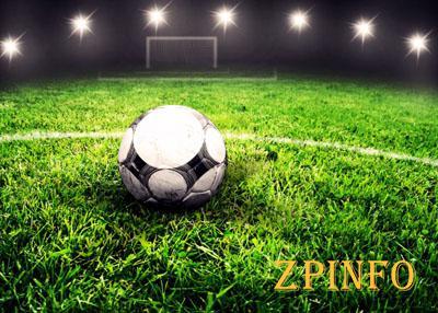 Запорожские футболисты проиграли «Энергии»