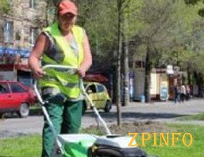 Запорожские озеленители приводят в порядок газоны