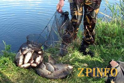 Запорожские пограничники борются с браконьерами
