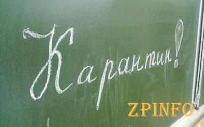 Запорожские школьники пока останутся дома