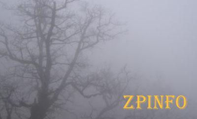 Запорожцам обещают небольшой дождь и туман