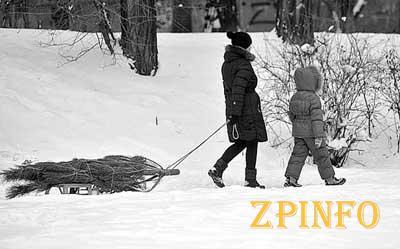 Запорожцы новогодние праздники встретят со снегом