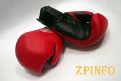 В Запорожье стартует международный турнир по боксу