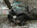 В Запорожье иномарка влетела в дерево