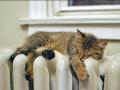В Запорожье отопление включат через 5 дней