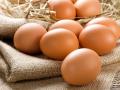 В Запорожье значительно подешевеют яйца